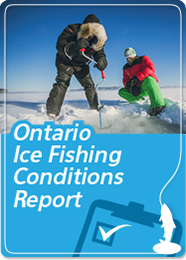 Ontario Ice Fishing Report